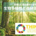 子どもと考えるSDGs|陸の豊かさって?生物多様性や森林環境について知ろう!